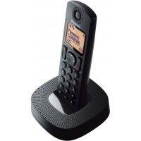 Домашний телефон Panasonic KX-TGC310UC1