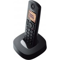 Ev telefonu Panasonic KX-TGC310UC1