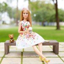 Игра MATTEL Кукла Barbie Коллекционная прогулка в парке и  Шикарный бассейн (DVP54)-bakida-almaq-qiymet-baku-kupit