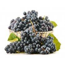 Виноград черный кг-bakida-almaq-qiymet-baku-kupit
